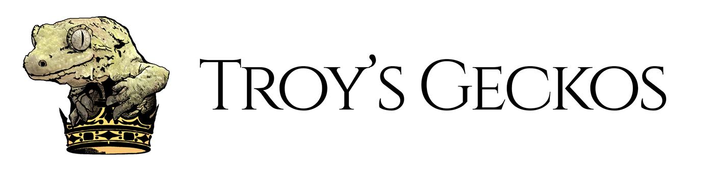 Troys Geckos